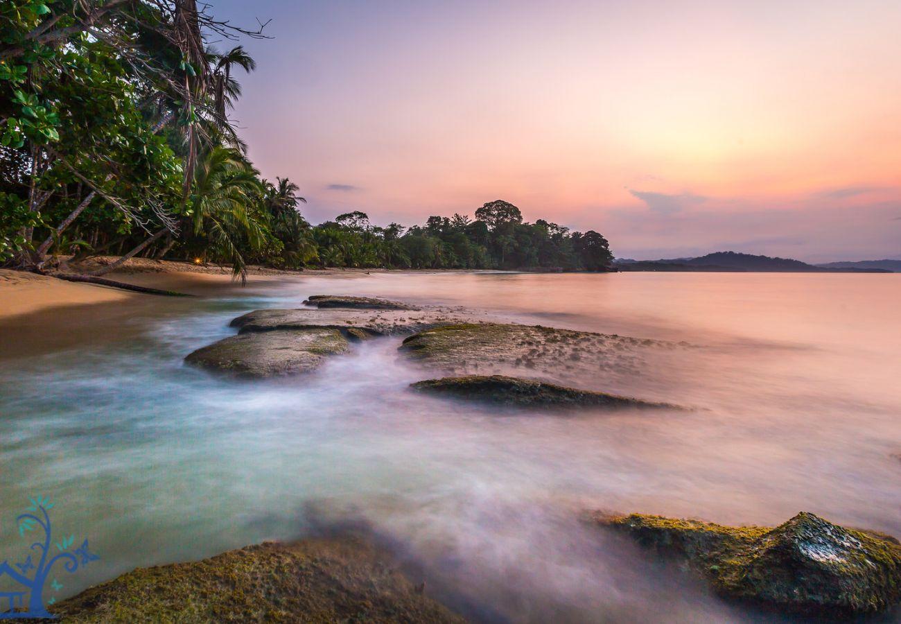 Villa en Punta Uva - Villa Macaw en el Refugio Silvestre con vista al Mar