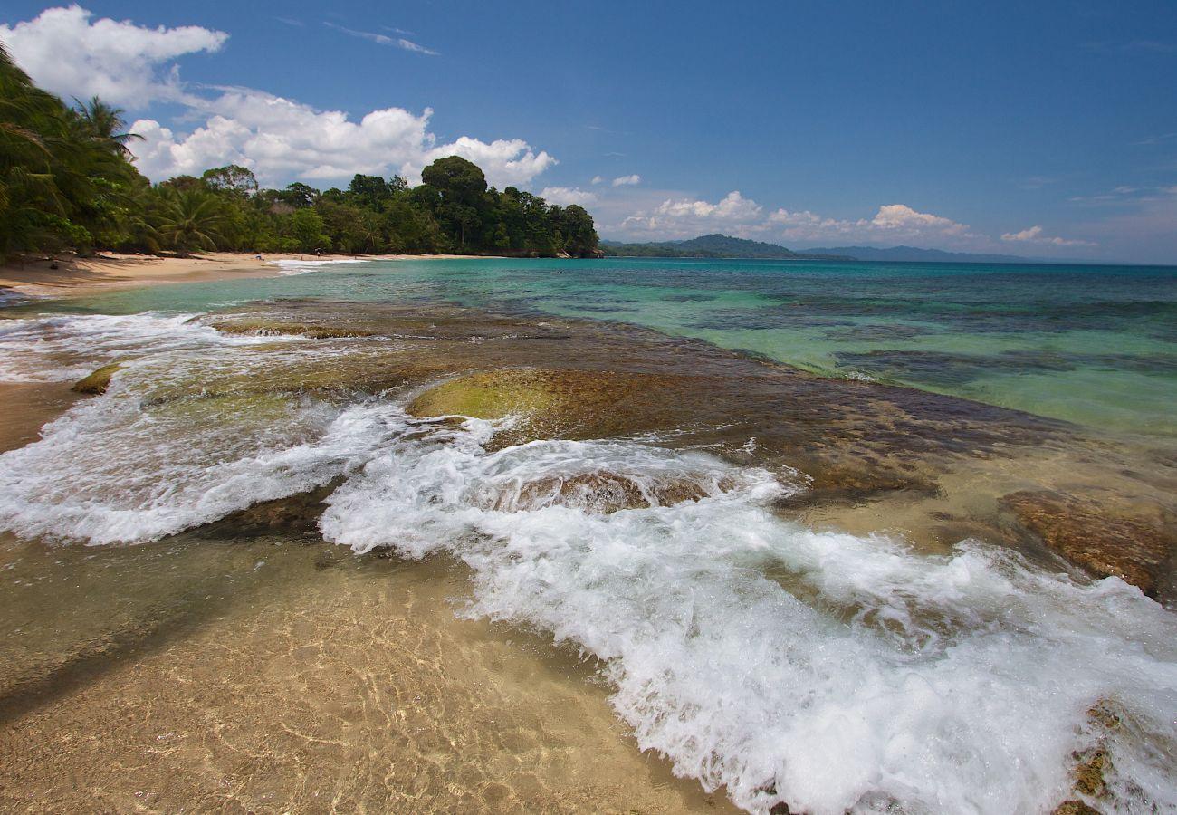 Bungalow en Punta Uva - Our Beachfront Bungalow en Punta Uva