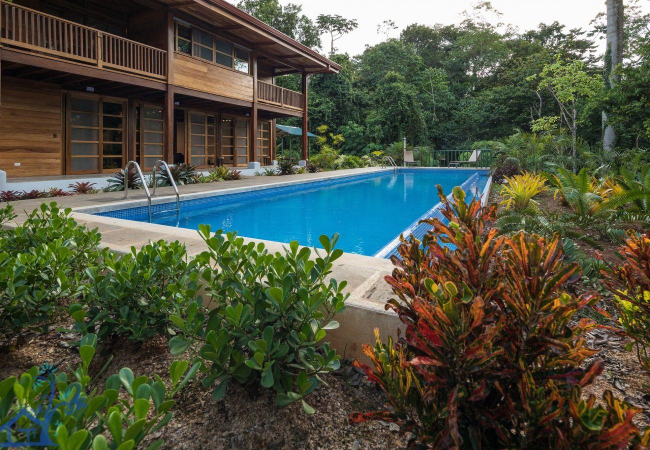 Casa en Punta Uva - Panorama Verde Pool House