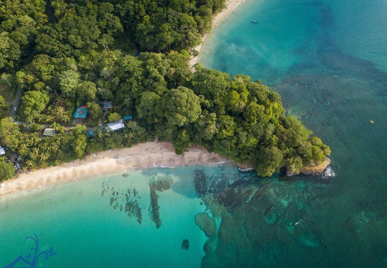 Villa à Punta Uva - Villa Macaw at the Big Tree Wildlife Refuge with Oceanview