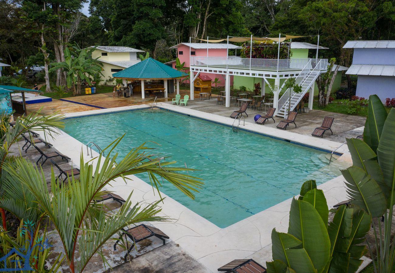 Maison à Puerto Viejo - Puerto Viejo Club Pool House for 12 PAX