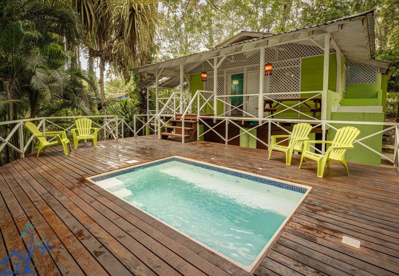 Maison à Cocles - Casa Cúcula Pool House