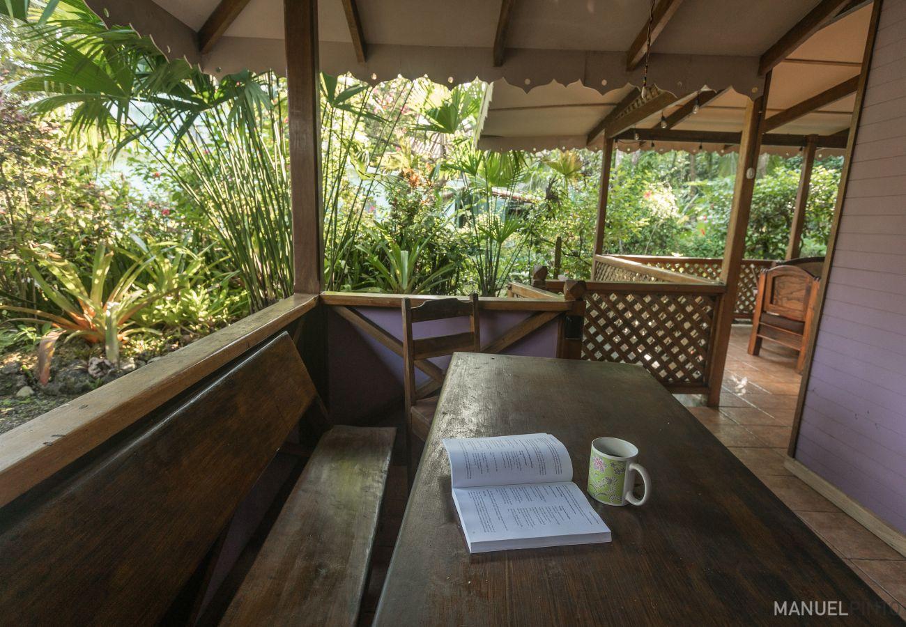 House in Punta Uva - Casa Violeta Beachside Paradise!