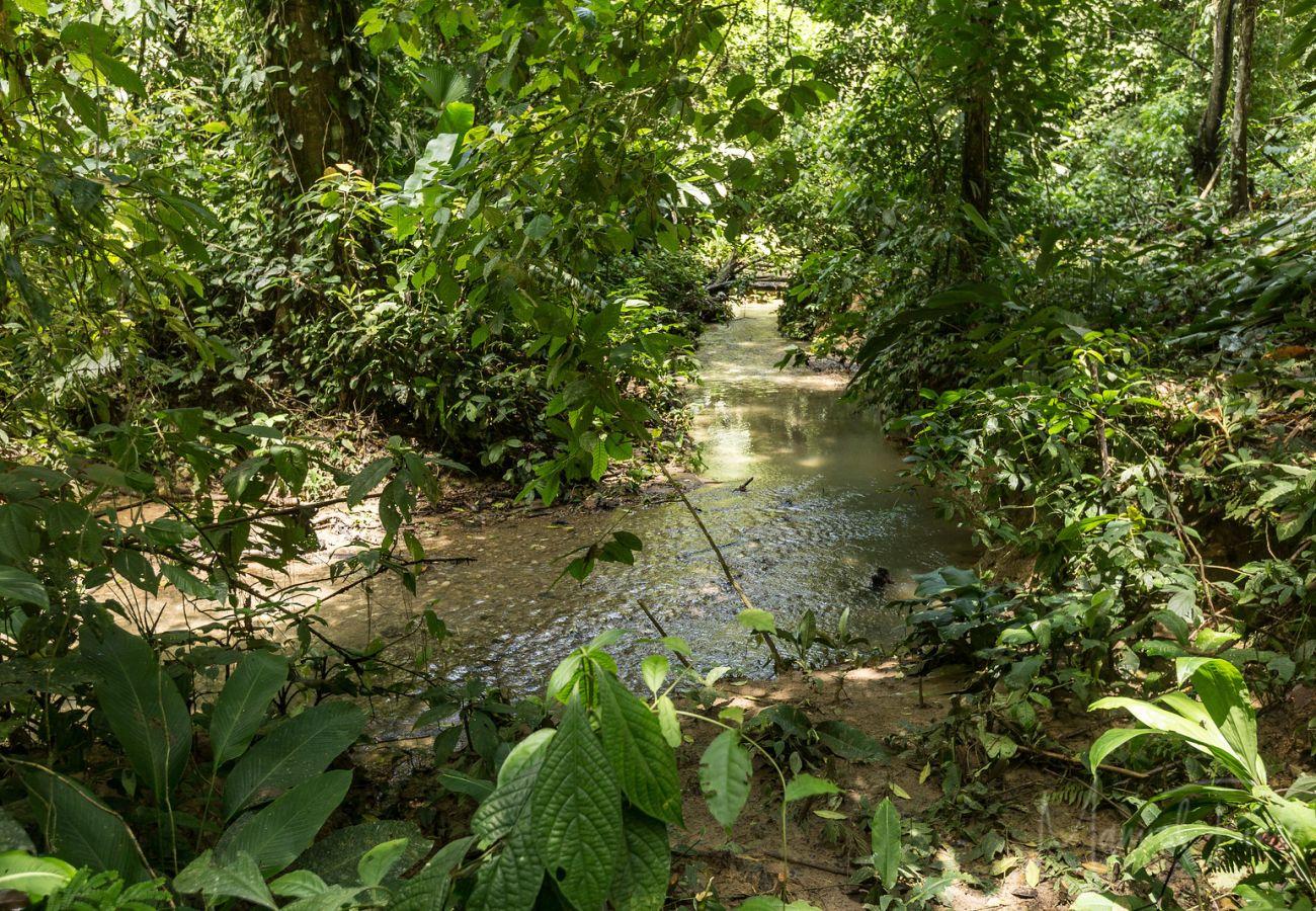 Parcela en Cocles - Margarita by the Riverside